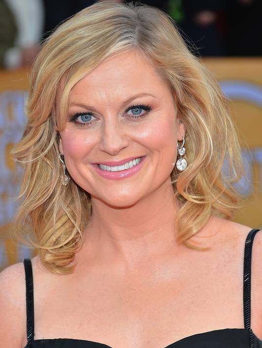 Amy Poehler earned a 2.4 million dollar salary, leaving the net worth at 18 million in 2017